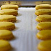 Mango Macaron Shells